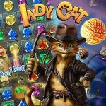 Indy Cat And Ball Of Fate